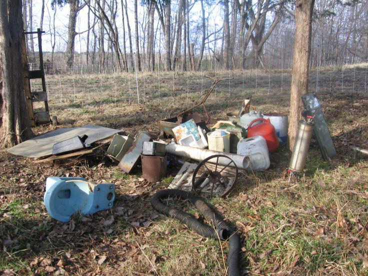 """""""rubbish pile in the woods"""