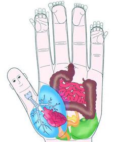"""""""accupressure hand"""""""